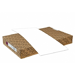 Mohawk Paper® VIA Pure White Vellum 80 lb. Text 25x38 in. 1000 Sheets per Carton